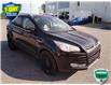 2015 Ford Escape Titanium (Stk: W0299AJX) in Barrie - Image 1 of 20