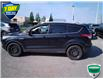 2015 Ford Escape Titanium (Stk: W0299AJX) in Barrie - Image 7 of 20