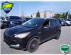 2015 Ford Escape Titanium (Stk: W0299AJX) in Barrie - Image 8 of 20