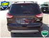 2015 Ford Escape SE (Stk: W1013A) in Barrie - Image 4 of 23