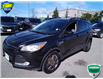 2015 Ford Escape SE (Stk: W1013A) in Barrie - Image 9 of 23
