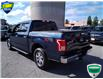 2016 Ford F-150 XLT (Stk: W0735B) in Barrie - Image 8 of 27