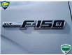 2014 Ford F-150 XLT White