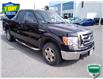 2012 Ford F-150 FX4 (Stk: 7071A) in Barrie - Image 1 of 24