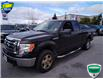 2012 Ford F-150 FX4 (Stk: 7071A) in Barrie - Image 9 of 24