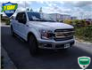 2019 Ford F-150 XLT (Stk: W0618AX) in Barrie - Image 1 of 18