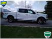 2019 Ford F-150 XLT (Stk: W0618AX) in Barrie - Image 2 of 18