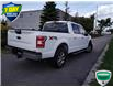 2019 Ford F-150 XLT (Stk: W0618AX) in Barrie - Image 3 of 18