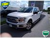 2019 Ford F-150 XLT (Stk: W0618AX) in Barrie - Image 8 of 18