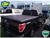 2014 Ford F-150 XLT (Stk: W022AX) in Barrie - Image 2 of 20
