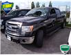 2014 Ford F-150 XLT (Stk: W022AX) in Barrie - Image 5 of 20