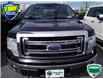 2014 Ford F-150 XLT (Stk: W022AX) in Barrie - Image 6 of 20