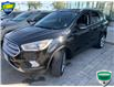 2018 Ford Escape Titanium (Stk: W0713A) in Barrie - Image 1 of 22