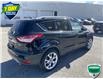 2016 Ford Escape Titanium (Stk: W0913A) in Barrie - Image 4 of 29