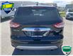 2016 Ford Escape Titanium (Stk: W0913A) in Barrie - Image 5 of 29