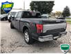 2019 Ford F-150 King Ranch (Stk: W0729A) in Barrie - Image 6 of 21