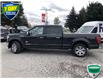 2019 Ford F-150 King Ranch (Stk: W0729A) in Barrie - Image 7 of 21