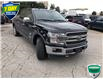 2019 Ford F-150 King Ranch (Stk: W0729A) in Barrie - Image 1 of 21