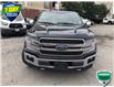 2019 Ford F-150 King Ranch (Stk: W0729A) in Barrie - Image 8 of 21