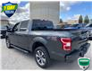 2019 Ford F-150 XL (Stk: W1009A) in Barrie - Image 7 of 30