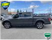 2019 Ford F-150 XL (Stk: W1009A) in Barrie - Image 8 of 30