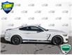 2016 Ford Shelby GT350 Base (Stk: W0946A) in Barrie - Image 3 of 22