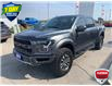 2019 Ford F-150 Raptor (Stk: T0512A) in St. Thomas - Image 3 of 29