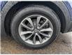 2017 Hyundai Santa Fe XL Premium (Stk: 7084BX) in St. Thomas - Image 6 of 30