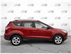 2014 Ford Escape SE (Stk: 0159A) in St. Thomas - Image 3 of 29