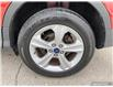 2014 Ford Escape SE (Stk: 0159A) in St. Thomas - Image 6 of 29