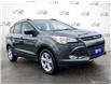 2016 Ford Escape SE (Stk: 1087B) in St. Thomas - Image 1 of 28