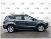 2016 Ford Escape SE (Stk: 1087B) in St. Thomas - Image 3 of 28