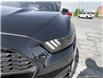 2016 Ford Mustang V6 (Stk: 1292AX) in St. Thomas - Image 8 of 28