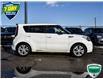 2016 Kia Soul  (Stk: 96689Z) in St. Thomas - Image 6 of 26