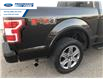 2018 Ford F-150 XLT (Stk: JFD76319T) in Wallaceburg - Image 15 of 15