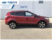 2017 Ford Escape SE (Stk: HUE78423) in Wallaceburg - Image 7 of 14