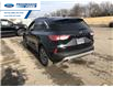2020 Ford Escape SEL (Stk: LUC31003) in Wallaceburg - Image 10 of 15