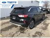 2020 Ford Escape SEL (Stk: LUC31003) in Wallaceburg - Image 8 of 15