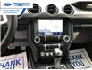2021 Ford Mustang GT Premium (Stk: M5101400) in Wallaceburg - Image 4 of 19