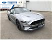 2021 Ford Mustang GT Premium (Stk: M5101400) in Wallaceburg - Image 2 of 19