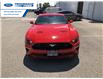 2021 Ford Mustang EcoBoost (Stk: M5124203) in Wallaceburg - Image 5 of 12