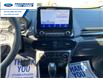 2021 Ford EcoSport Titanium (Stk: MC429828) in Wallaceburg - Image 5 of 16
