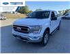 2021 Ford F-150 XLT (Stk: MFC52130) in Wallaceburg - Image 9 of 15