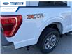 2021 Ford F-150 XLT (Stk: MFC52130) in Wallaceburg - Image 15 of 15