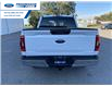 2021 Ford F-150 XLT (Stk: MFC52130) in Wallaceburg - Image 12 of 15