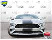 2021 Ford Mustang  (Stk: D1G024A) in Oakville - Image 2 of 25
