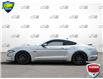 2021 Ford Mustang  (Stk: D1G024A) in Oakville - Image 3 of 25