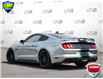 2021 Ford Mustang  (Stk: D1G024A) in Oakville - Image 4 of 25