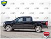 2019 Ford F-150 XLT (Stk: P6005) in Oakville - Image 3 of 27