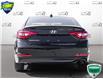 2016 Hyundai Sonata GL (Stk: D0D160X) in Oakville - Image 5 of 27